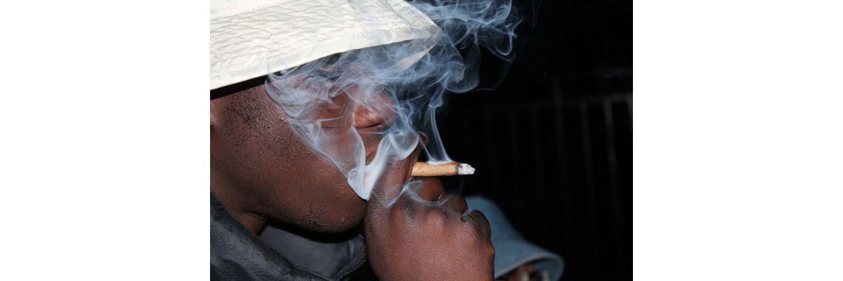 Cannabis Blunt Wraps – Anleitung zum nach Drehen für Einsteiger - Cannabis Blunt Wraps – Anleitung zum nach Drehen für Einsteiger