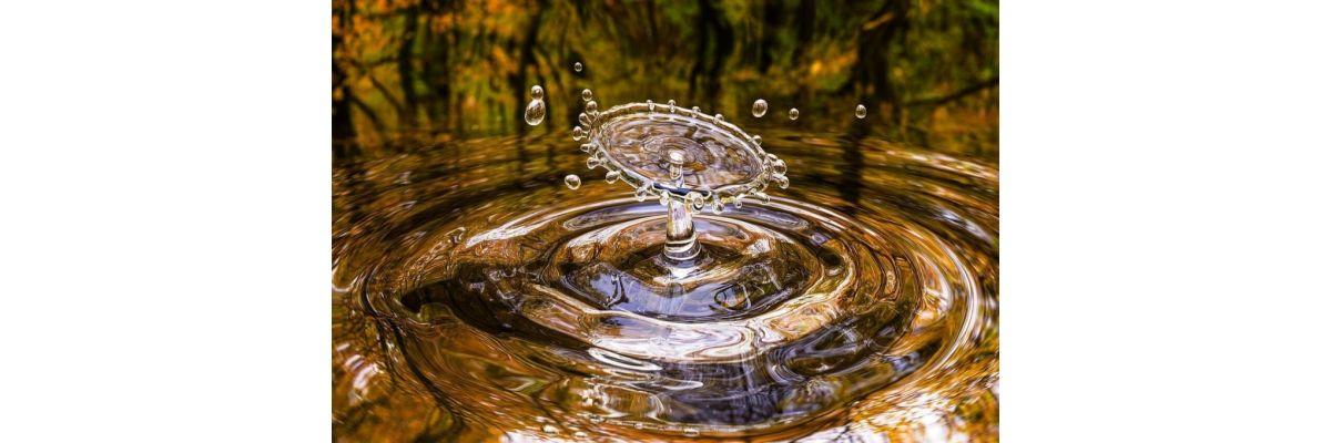 Anfänger Cannabis Anbau Bewässerung – Growguide Teil 4 - Anfänger Cannabis Anbau Bewässerung – Growguide Teil 4