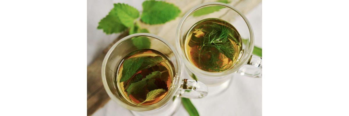 Cannabis Tee Rezept – Selber machen für Zuhause oder Unterwegs - Cannabis Tee Rezept – Selber machen für Zuhause oder Unterwegs