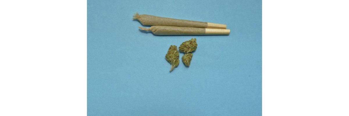 Cannabis Grinder selber bauen – Aus normalen Haushaltsgeräten - Cannabis Grinder selber bauen – Aus normalen Haushaltsgeräten