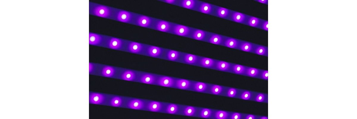 LED Growbox Optimieren – 5 einfache Schritte zu mehr Ertrag - LED Growbox Optimieren – 5 einfache Schritte zu mehr Ertrag