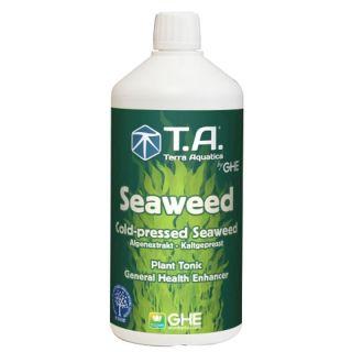 T.A. Seaweed
